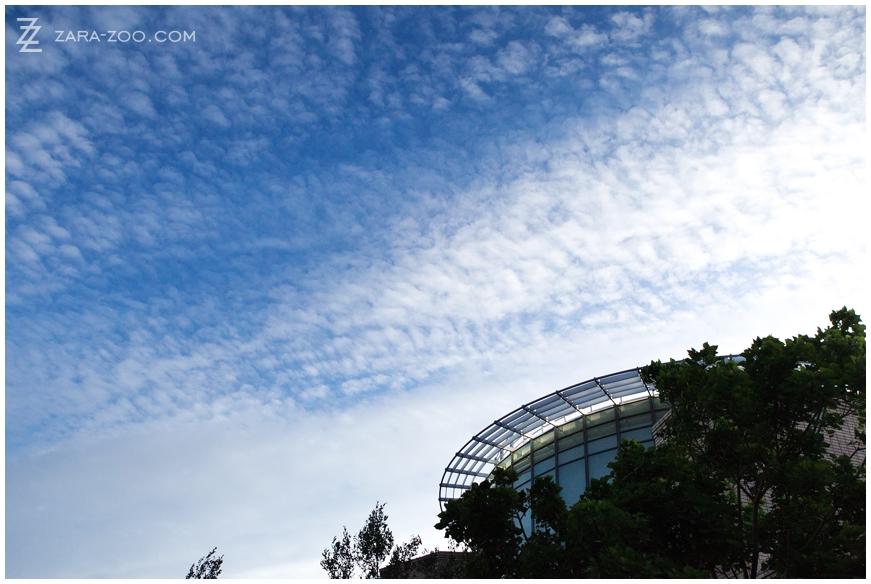 ABSA-CPTYE-2012-GOOD-201