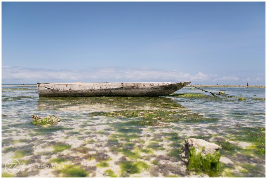 Honeymoon-in-Zanzibar_082