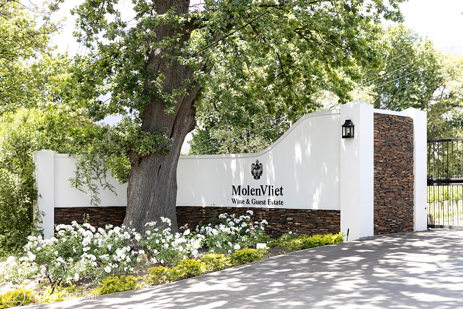Molenvliet Wine Estate South Africa