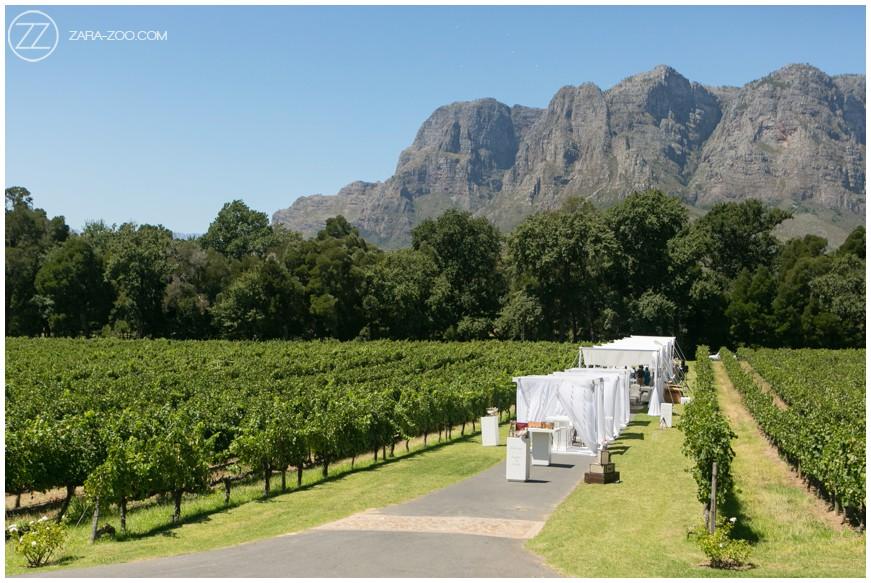 MolenVliet Cape Winelands Weddings