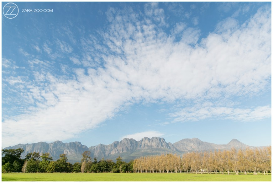 Lourensford Estate Cape Town South Africa