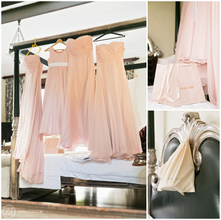 Wedding Photos Bridesmaids Dresses