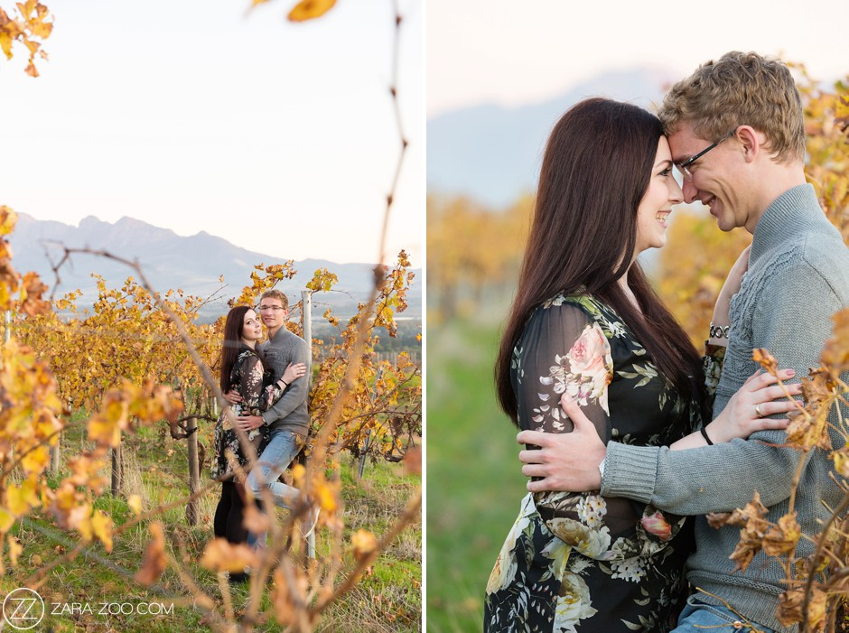 Engagement Shoot Cape Town South Africa