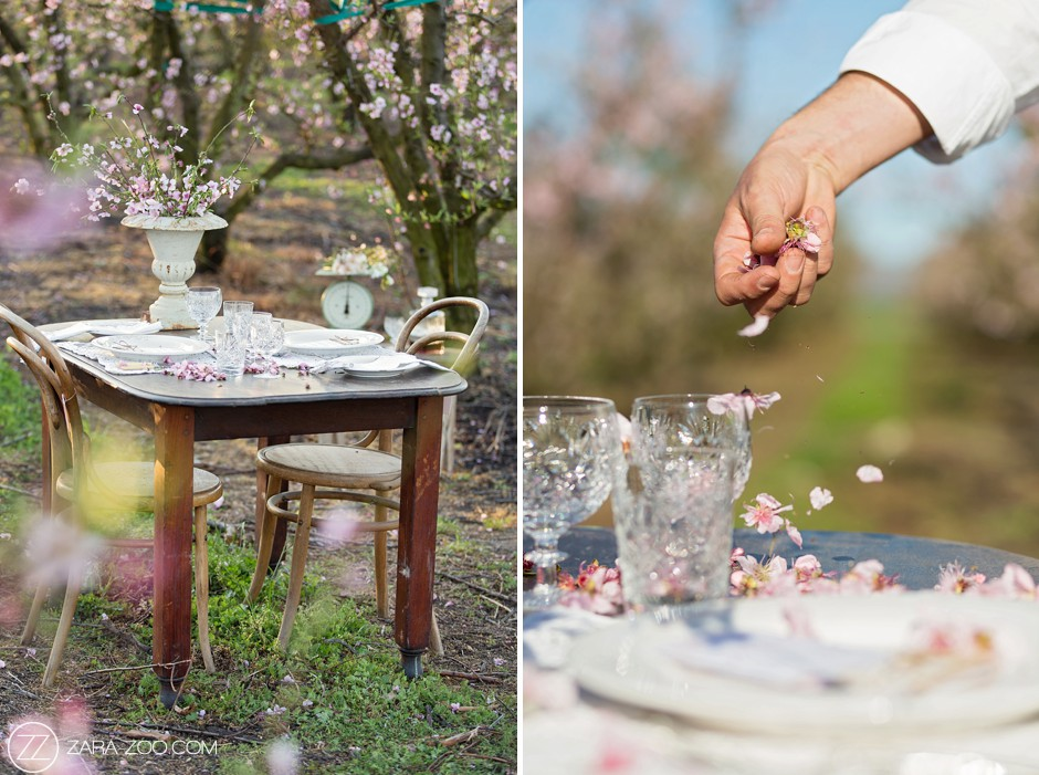 Peach Blossoms Spring Wedding Decor