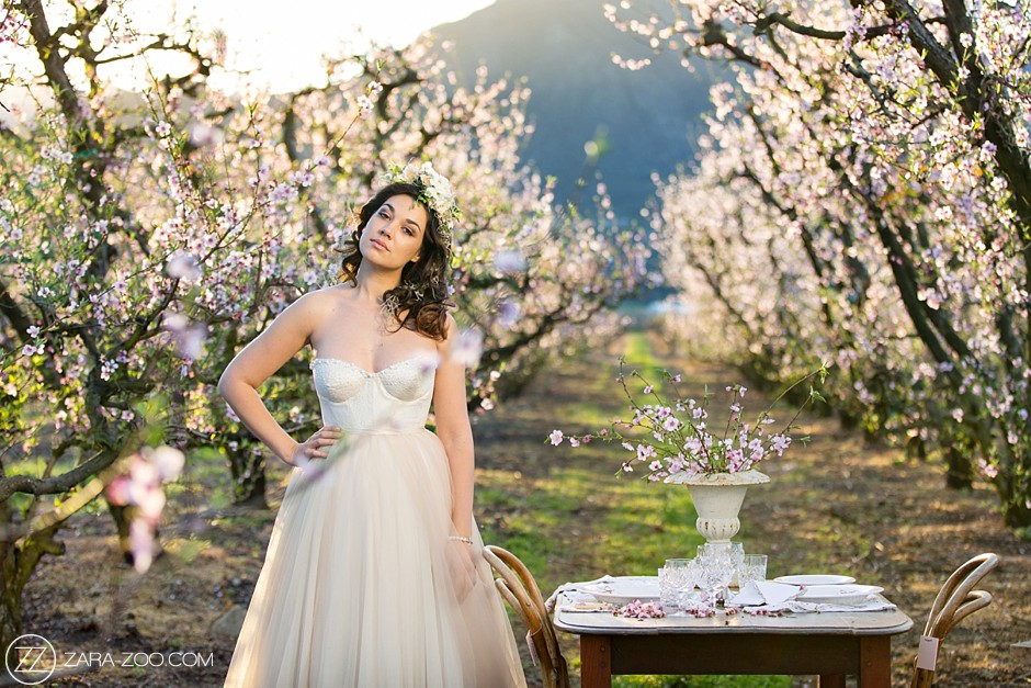 Spring Wedding Inspiration Blossoms