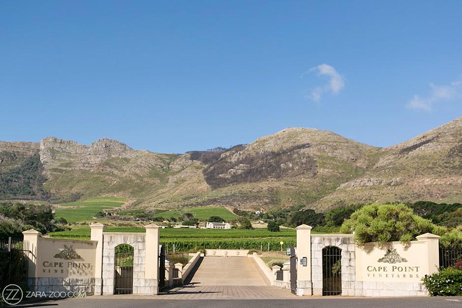 Cape Point Vineyards Venue