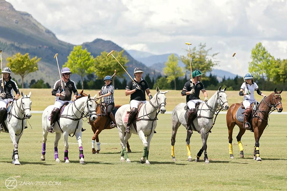 Val de Vie Polo Club Horses