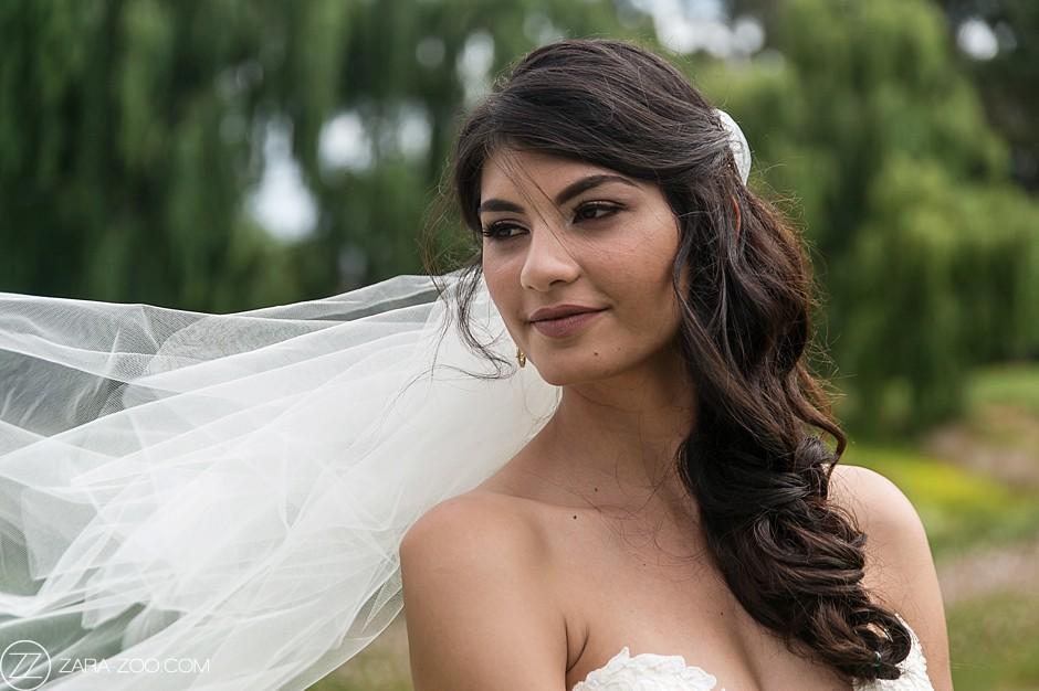 Beautiful Bride with Veil, Wedding Portraits