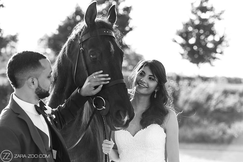 Wedding Photos with Horse ZaraZoo Photography