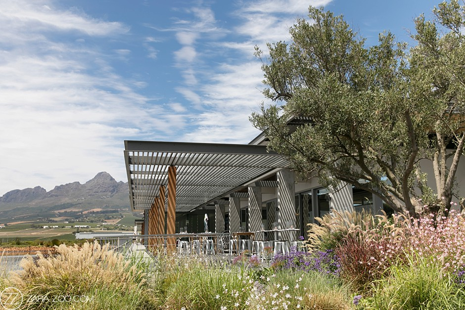 Cavalli Estate Wedding Venue Cape Town