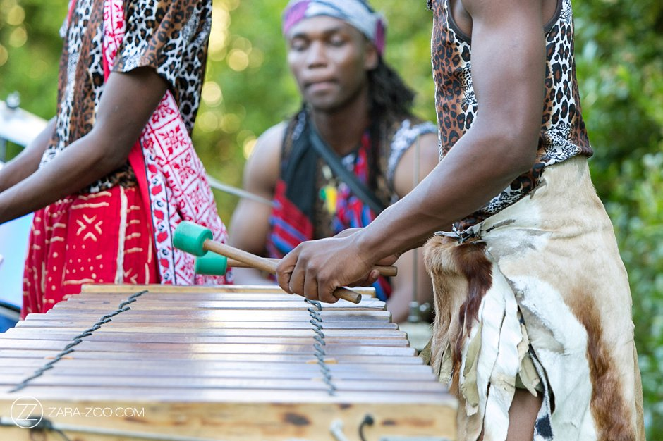 Destination Wedding South Africa Traditional Music